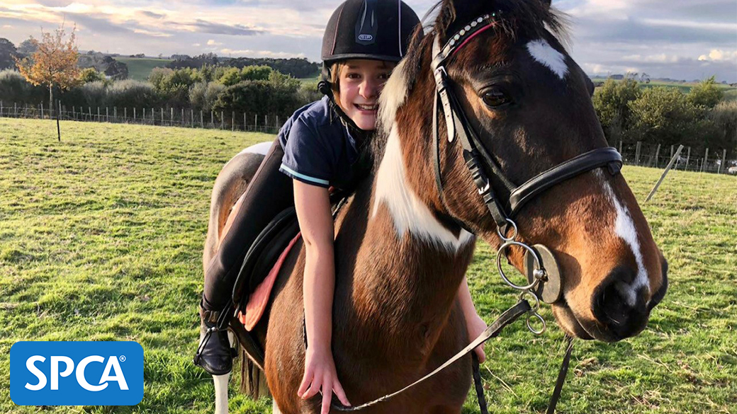 girl on horse animals spca charity smart pack